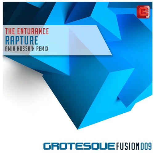 The Enturance - Rapture (Amir Hussain Remix)